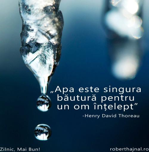 Henry David Therou_Apa Este Singura Bautura Pentru Un Om Intelept