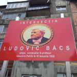 Intersectia ludovic Bacs - Petrila