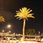 Palmier Barcelona - Aeroport