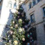 Pomul lor de Crăciun